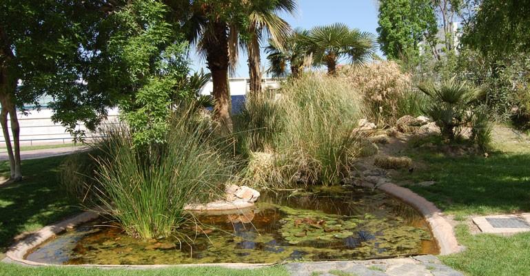 Visitas guiadas por los Recorridos botánicos