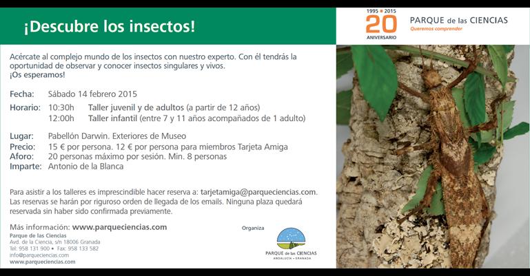 Taller Descubre los insectos