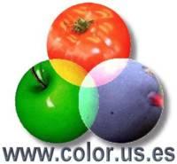 CCA_logo+web
