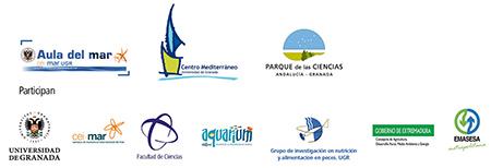 logos_curso_V3